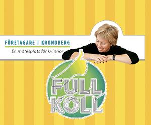 Företagare i Kronoberg - Full Koll